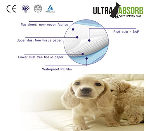 Large Pee Pads For Older Dogs