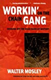 Workin' on the Chain Gang: Shaking Off the Dead Hand of History (Class : Culture) (0472031988) by Mosley, Walter