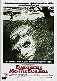フランケンシュタインと地獄の怪物[DVD]