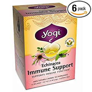 Yogi Echinacea Immune Support, Herbal Tea Supplement, 16-Count Tea Bags (Pack of 6)