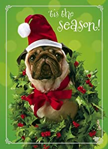Avanti Plus Christmas Cards, Holly-day Pug, 10 Count