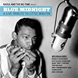 Blue Midnight: A Live Tribute to Little Walter Raoul & Big Time