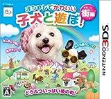オシャレでかわいい子犬と遊ぼ!-街編-