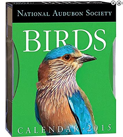 National Audubon Society Birds Gallery 2015 Desk Calendar