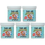 BAD AIR SPONGE 14OZ (Pkg of 5)