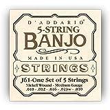 D'Addario J61 5-String Banjo Strings, Nickel, Medium, 10-23