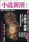 小説新潮 2013年 07月号 [雑誌]