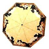 Parapluie Ouverture