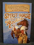 Spirit Horse of the Rockies