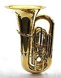 Schiller American Heritage BBb 5-Valve Piston Compensating Tuba - Brass