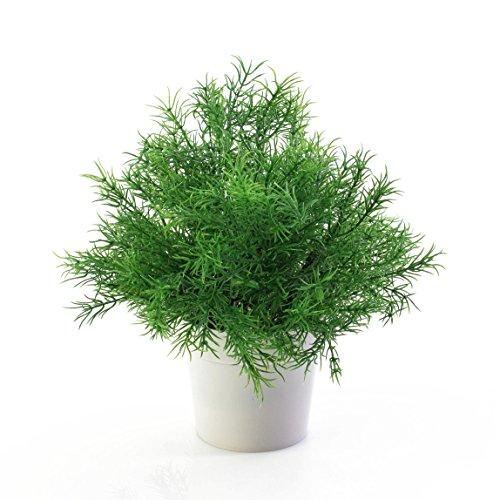petite-plante-verte-artificielle-asparagus-dans-un-pot-decoratif-traite-anti-uv-25-cm-plante-en-pot-
