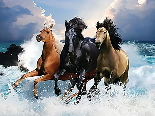 wave-runners-300-piece-jigsaw-puzzle-heavenly-horses-series-by-lafayette-puzzle-factory-by-lafayette