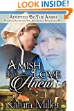 Amish Love Anew: Hannah, Jacob and The Abandoned Englischer Boy (Adopted By The Amish Book 1)