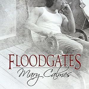 Floodgates Audiobook