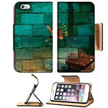 buy Apple Iphone 6 Plus Iphone 6S Plus Flip Pu Leather Wallet Case Lionfish Sipadan Malaysia Mural The Stone Painting Concept Image 34503585 By Msd Customized Premium