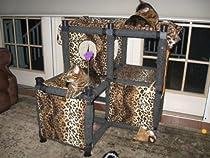 Hot Sale Starter Kit - Modular Cat Playground : Size STARTER KIT