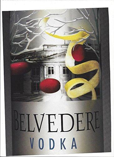 print-ad-for-belvedere-vodka-lemon-twist-close-up-bottle-print-ad