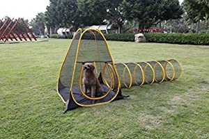 "Outdoor Feline Funhouse "" Teepee"" Set of Two"