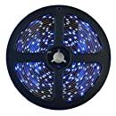 HitLights Weatherproof Blue SMD3528 LED Light Strip - 300 LEDs, 16.4 Ft Roll, Cut to length - 82 Lumens / 1.5 Watts per foot, Requires 12V DC, IP65