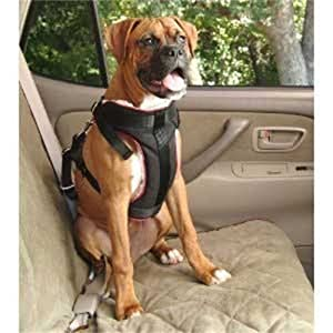 Dog Vehicle Safety Harness Size: Large: Dogs 45-85 lbs