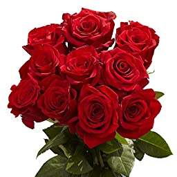 Freedom Red Roses | 50 Red Roses
