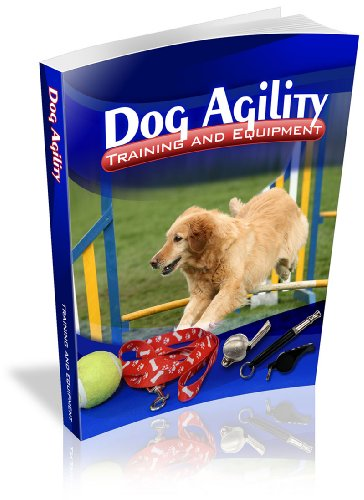 Dog Agility Training And Equipment