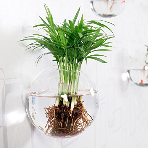 mkono-glass-hanging-wall-vase-flower-plant-pot-bubble-container-water-planter-m