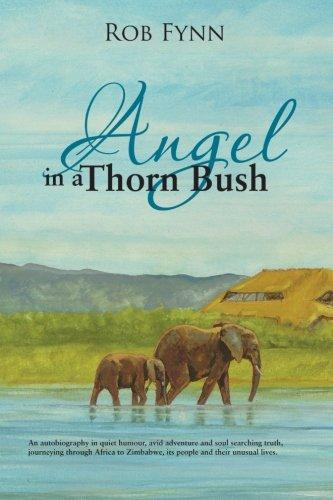 Book: Angel in a Thorn Bush by Rob Fynn