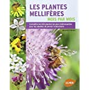 Les plantes mellifères mois par mois : Connaître les 100 plantes les plus intéressantes pour les abeilles de janvier à décembre