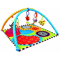 Sassy Sensory Play Gym