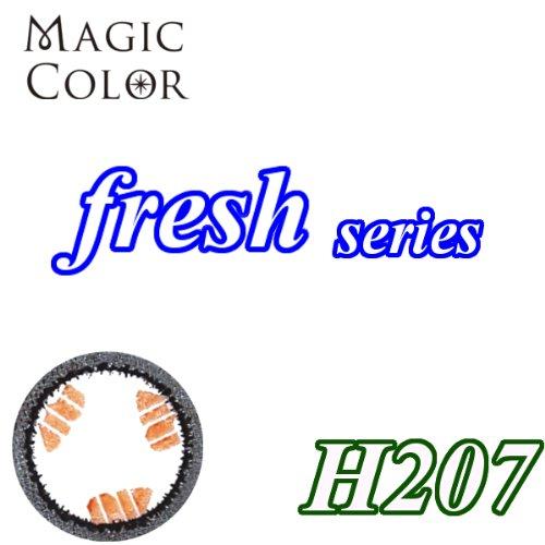 MAGICCOLOR (マジックカラー) fresh H207 度なし 14.0mm 1ヵ月使用 2枚入り