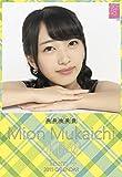 クリアファイル付 (卓上)AKB48 向井地美音 カレンダー 2015年