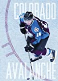 img - for The NHL: History and Heroes: The Story of the Colorado Avalanche book / textbook / text book