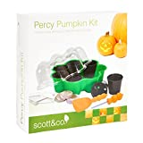 Scott & Co Percy Pumpkin Kit Delicious Pumpkins to Grow