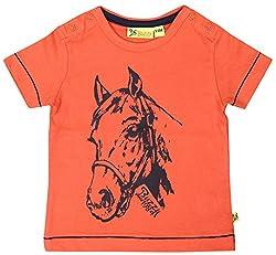 Buzzy Baby Boys' 9-12 Months Cotton T- Shirt (Orange)