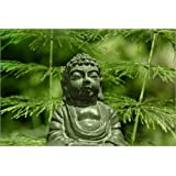 "Leinwandbild 100 x 70 cm: Buddha von Emotion-Art - fertiges Wandbild, Bild auf Keilrahmen, Fertigbild auf echter Leinwand, Leinwanddruckvon ""Emotion-Art"""