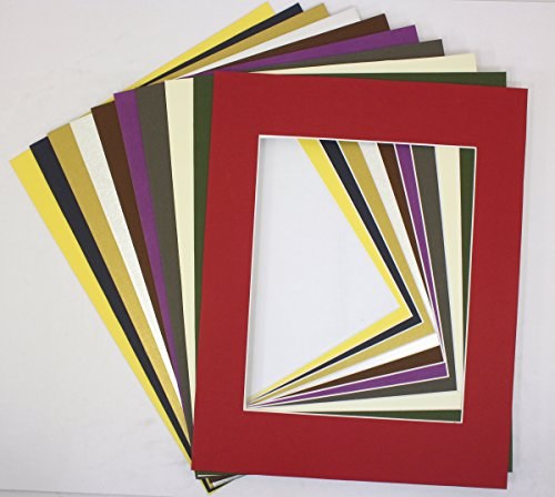 Golden State Art, Pack of 10 MIXED COLORS 16x20 Picture Mats Matting with White Core Bevel Cut for 11x14 Pictures (Cheap Picture Frames 16x20 compare prices)