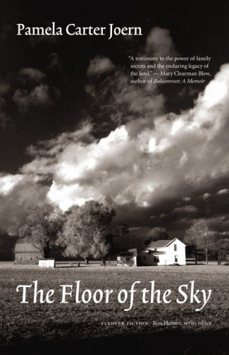 The Floor of the Sky (Flyover Fiction), Pamela Carter Joern