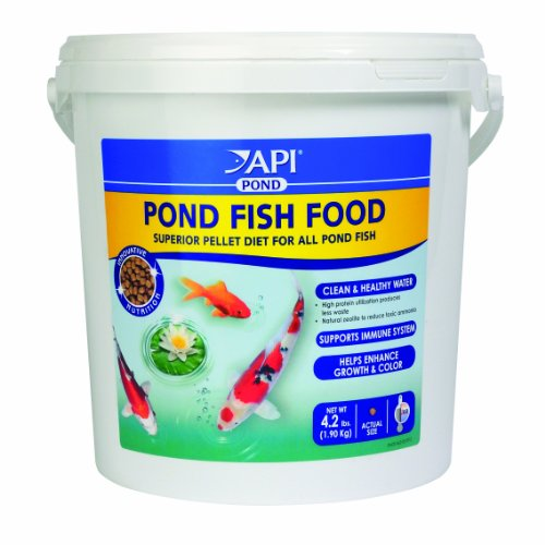 Api pond fish food 4 2 pound animals pet supplies pet for Pond fish food