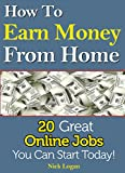 img - for How To Earn Money From Home: 20 Great Online Jobs You Can Start Today! book / textbook / text book