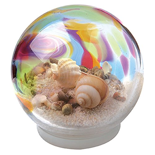 Rainbow Seashell Water Snow Globe Snow Globes Olivia