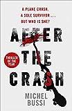 After the Crash (English Edition)