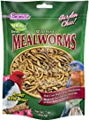 F.M. Browns Garden Chic Mealworms 7-Ounce