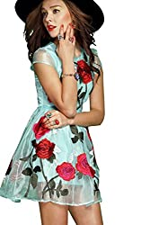Fabboom Designer Turquoise Colour Embroidered Western Dress