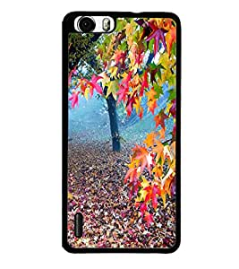 Colourful Nature Walk 2D Hard Polycarbonate Designer Back Case Cover for Huawei Honor 6