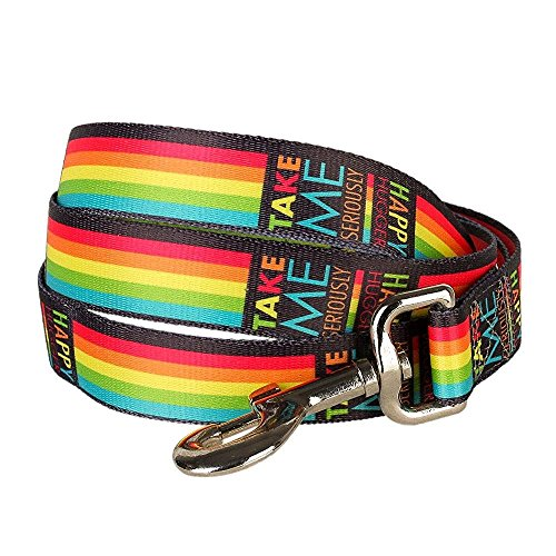 blueberry-pet-durable-rainbow-stripes-designer-dog-lead-120-cm-x-25cm-large-leads-for-dogs-matching-