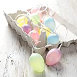 10 Pastel Easter Egg Battery Operated LED Fairy Lights by Lights4fun