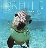 2015うみまーるミニムーンカレンダー `Smile−笑顔いっぱいアシカたち' (月の満ち欠け)