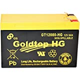 Genuine FiOS OEM Approved Replacement Battery by GS Battery - GT12080-HG - Premium Replacement for PX12072-HG