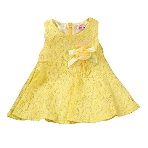 7bb2857d5 Rorychen Baby Girls' Sleeveless Lace Zipper Dress 24 Months Light ...